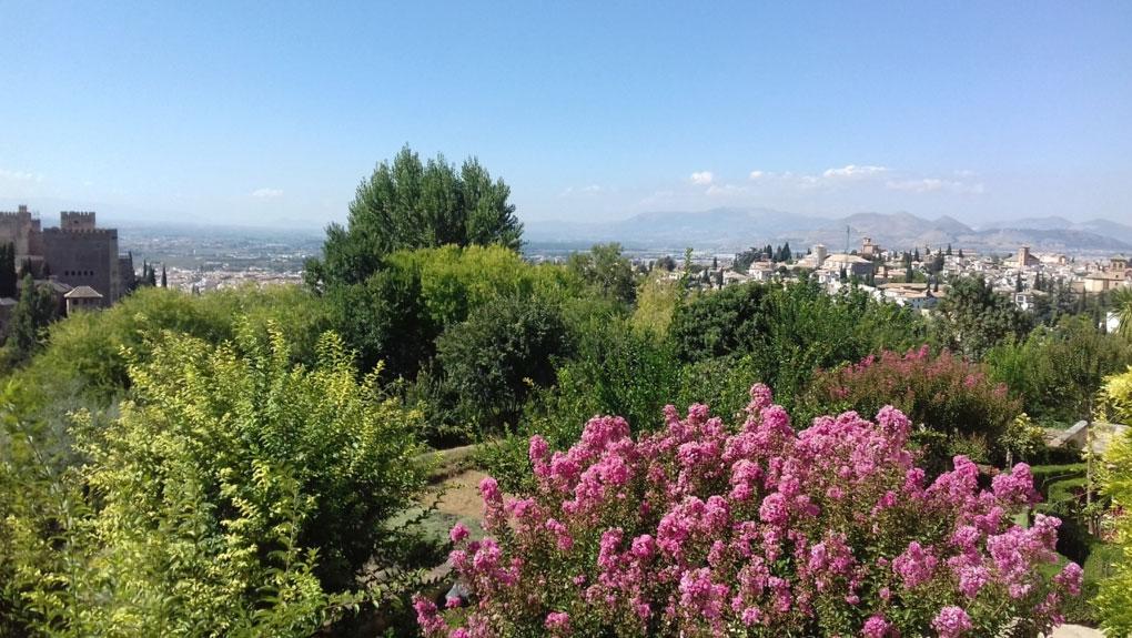 Granada Psychotherapy